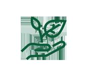 Icon Baumkontrolle
